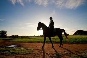 horse-riding2
